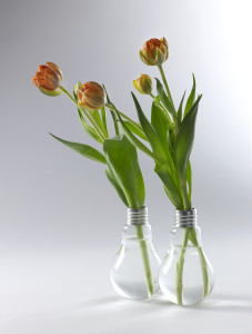 B0811416s1 = Lampe Edison Medium h16 - 2
